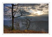 paysage_-23