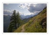 paysage_38