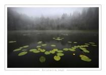 paysage_41