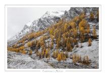 paysage_43