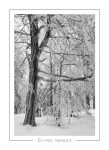 hiver_10