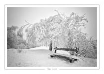 hiver_11-2