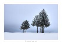hiver_14
