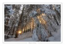 hiver_15