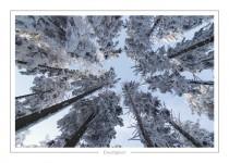 hiver_2
