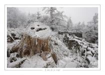 hiver_23