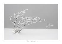 hiver_24
