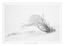 hiver_25