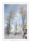 hiver_34